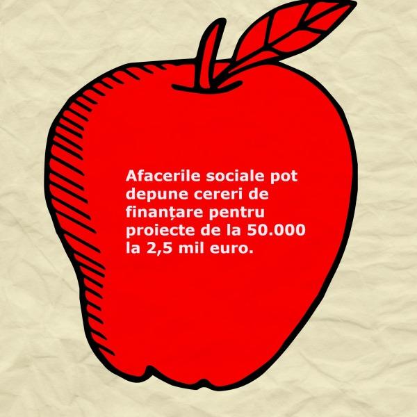 afaceri sociale_finantari_octombrie 2014_50000_euro