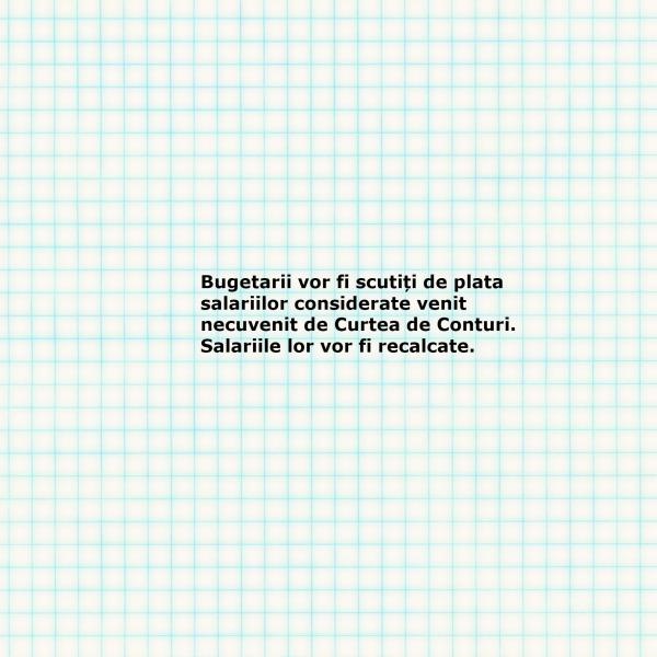 bugetarii_scutiti de plata unor sume_salarii_Curtea de Conturi