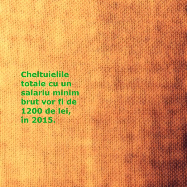 cheltuieli salariu_salariu minim brut_2015_efecte