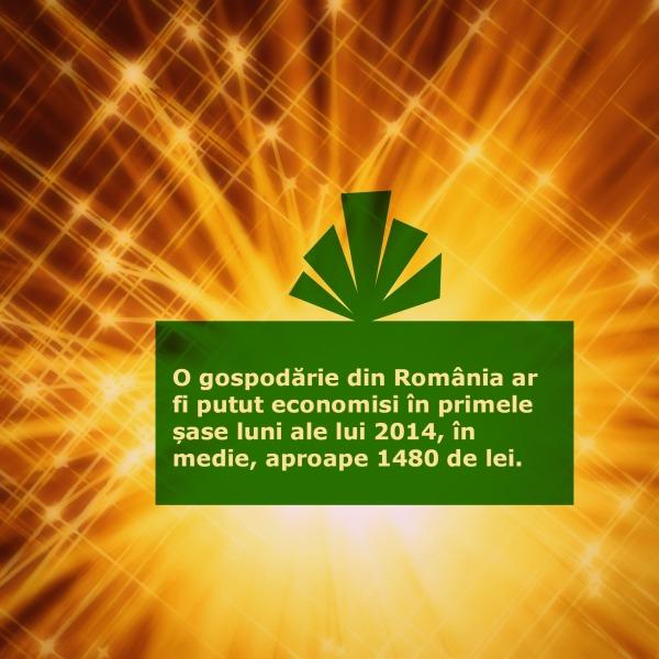 venituri_cheltuieli_Romania_economisire_trimestrul II 2014_gospodarie